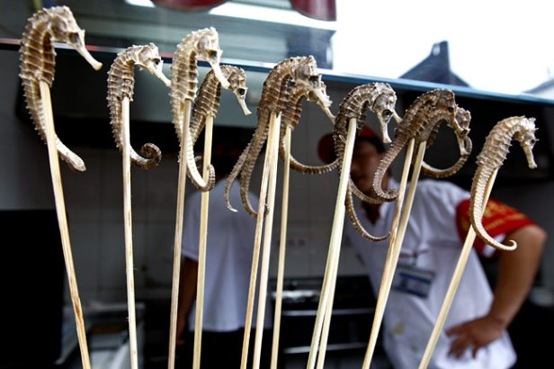 Seahorses on Skewers, found in Beijing